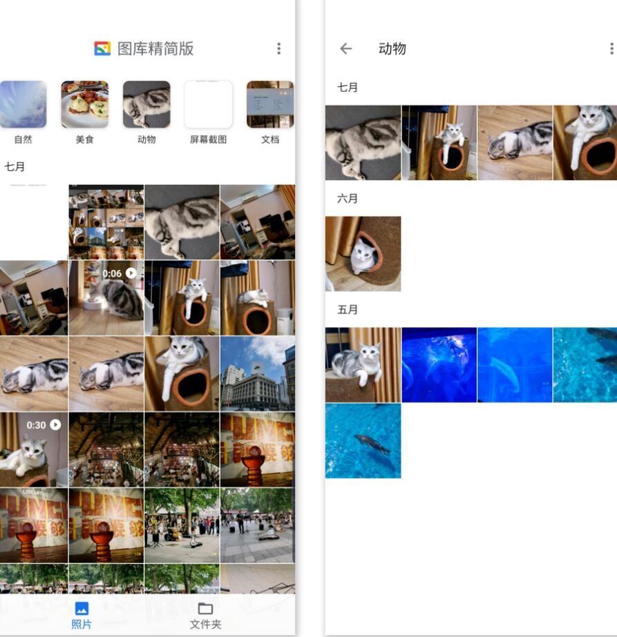 輕量相冊 Gallery Go,不聯網也能用的 Google Photos 資源使用教學  Gallery Go