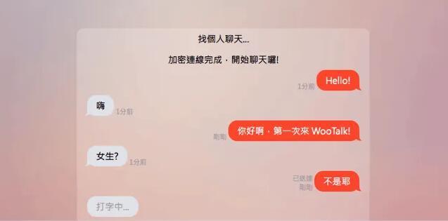 WooTalk 吾聊介绍:匿名聊天對話寻人 資源使用教學